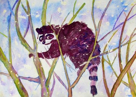 Raccoon Watercolor 2016.JPG
